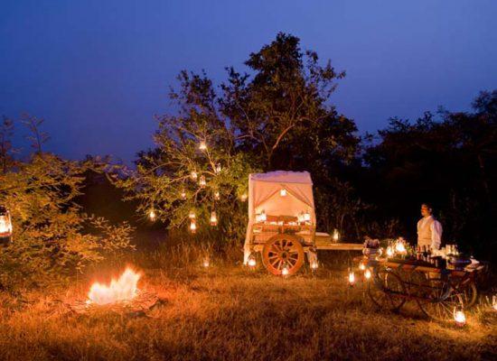 Cena en los arbustos, Pashangarh Panna