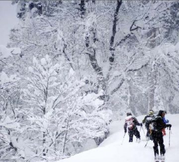 Pistas de ski 2