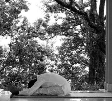 Yoga en la mañana - Ananda Himalaya